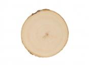 Drevená podložka - kmeň - 10-11cm