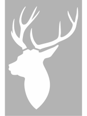 Šablóna 10 x 15 cm - jeleň profil