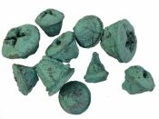 Eukalyptové plody farbené 10 ks - tyrkysové