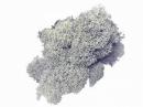 Islandský aranžérsky mach 30 g - sivo fialový