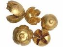Prírodné bukvice farbené 5 ks - antické zlaté