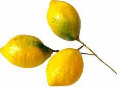 Dekoračný citrón 5 cm