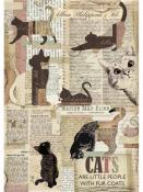 Ryžový papier A4 - vintage mačka