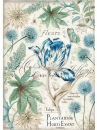 Ryžový papier A4 - modrý tulipán