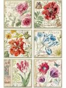 Ryžový papier A4 - Botanic Flowers