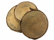 Drevená podložka - kmeň - 10-12cm - breza