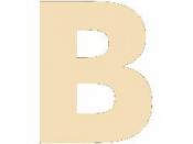 Drevené písmeno - 45 mm - B