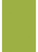 Filc 1 mm A4 - lipový zelený