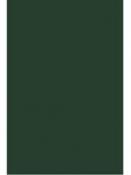 Filc 1 mm A4 - machový zelený