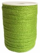 Jutová šnúra plochá 12mm - jablková zelená
