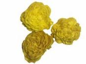 Kvety Ming 3 ks - žlté