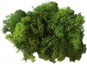 Islandský aranžérsky mach 30g - trávový zelený