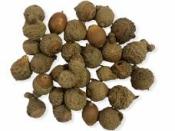 Sušené mini žalude 20g - natur