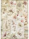 Ryžový papier A4 - herbár