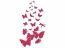 Šablóna 21 x 29,7cm - Motýle