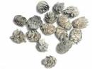 Šišky - Tuja 15 ks - vintage šedé