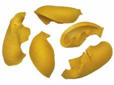 Sušené drievka 5 ks - šupky - žlté