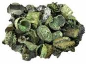 Sušený mix plodov 110 g - vintage zelený