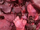 Sušený mix plodov 150 g - karmínový
