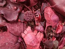 Sušený mix plodov 1 kg - karmínový