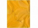 Aranžérske pierka hladké - 3g - slnečnicové