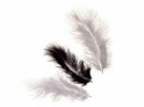 Marabu pierka - 15ks - čierne