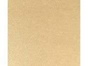 Umelá koža/koženka - 30x30cm - zlatá