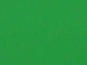 Zamatová machová guma A4 - zelená